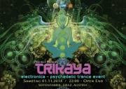 Trikaya #8  Electronica - Psychedelic Trance Event, 8010 Graz  1. (Stmk.), 01.11.2014, 22:00 Uhr