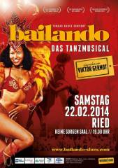 Bailando - das Tanzmusical, 4910 Ried im Innkreis (OÖ), 22.02.2014, 19:30 Uhr