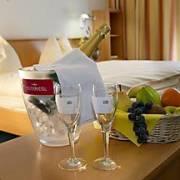 Seminar-Park-Hotel Hirschwang, 2651 Reichenau an der Rax (NÖ)