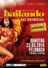 Bailando - das Tanzmusical, 8330 Feldbach (Stmk.), 22.03.2014, 19:30 Uhr
