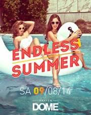 Endless Summer, 1020 Wien  2. (Wien), 09.08.2014, 22:00 Uhr