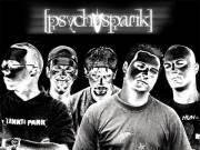 Psychospank Konzert, 3580 Horn (NÖ), 17.04.2009, 00:00 Uhr