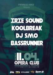Viennese Vibez feat. Koolbreak(G-Spot)/Irie Sound /Bassrunner/DJ Smo (FourstarFoundation), 1010 Wien  1. (Wien), 11.04.2014, 22:00 Uhr
