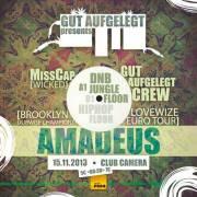 Gut Aufgelegt pres. Amadeus // Jungle / DnB / Raggatek / Hiphop / Dub //, 1070 Wien  7. (Wien), 15.11.2013, 22:00 Uhr