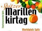 Marillenkirtag, 3620 Spitz (NÖ), 17.07.2009, 02:00 Uhr