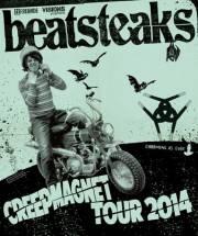 Beatsteaks, 1110 Wien 11. (Wien), 07.11.2014, 20:00 Uhr