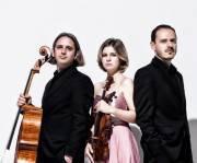 Haydn Chamber Ensemble, 7000 Eisenstadt (Bgl.), 28.11.2015, 19:30 Uhr