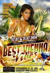 Best Vienna Vibes, 1090 Wien  9. (Wien), 14.07.2014, 22:00 Uhr