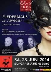 """""""Fledermaus"""" auf Abwegen, 3264 Reinsberg (NÖ), 28.06.2014, 20:30 Uhr"""