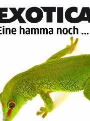 Die letzte EXOTICA Reptilienbörse in Wien?, 1030 Wien,Landstraße (Wien), 27.12.2015, 10:00 Uhr