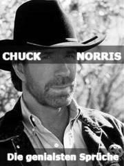 Chuck Norris sucht nicht bei Google, Google fragt Chuck Norris von Katrin