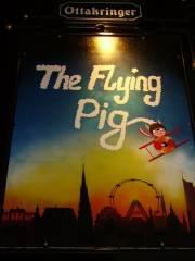 Flyingpig, 1070 Wien  7. (Wien)