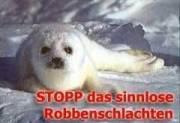 Schluss mit Tierquälerei!! von Olga