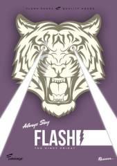 Flash, 1010 Wien  1. (Wien), 10.01.2014, 23:00 Uhr