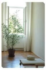 Zendo Rosinagasse, 1150 Wien 15. (Wien)