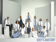 Greys Anatomy von Spieß