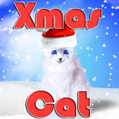Xmas Cat bestellen!