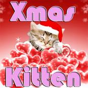 Xmas Kitten
