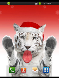 Screenshot von Xmas Tiger