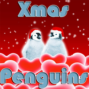 Xmas Penguins