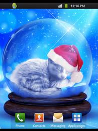 Screenshot von Cat Dreaming