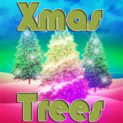 Xmas Trees bestellen!