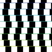 Illusion Sizes