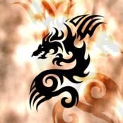 Dragon Tattoo bestellen!