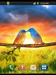 Screenshot von Nature Backgrounds
