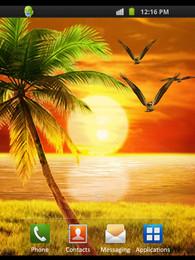 Screenshot von Nature Designs