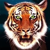 Tiger Style bestellen!