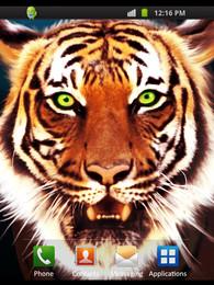 Screenshot von Tiger Style