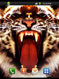 Screenshot von Tiger Style