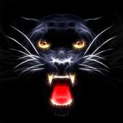 Puma Design bestellen!