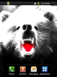 Screenshot von Cool Bear