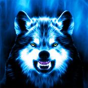 Scary Wolf bestellen!