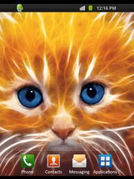 Screenshot von Tiny Kitten