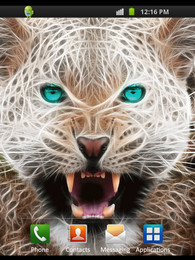 Screenshot von Wild Animal