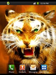 Screenshot von Tiger Design