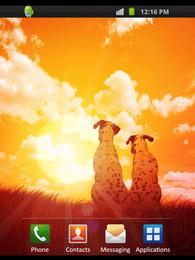Screenshot von Friends Sunset
