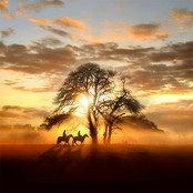 Sunset Ride bestellen!