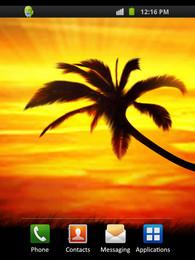 Screenshot von Sunset Palm