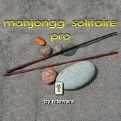 Mahjongg Solitaire Pro bestellen!