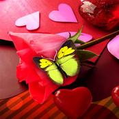 Valentine Design 06