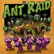 Ant Raid bestellen!