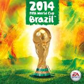 2014 FIFA World Cup Brazil bestellen!