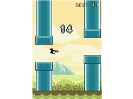 Screenshot von Fliege oder schwimme unter Wasser mit unterschiedlichen exotischen Vögeln. Wie viele Hindernisse kannst du überqueren?