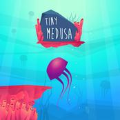 Tiny Medusa bestellen!