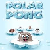 Polar Pong bestellen!