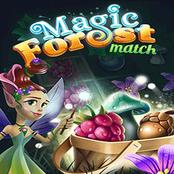 Magic Forest Match
